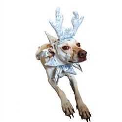 "Pet Krewe Holiday Silver ""Frozen"" Antlers"