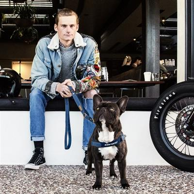 EzyDog Denim Quick Fit Harness - Friday Collective!