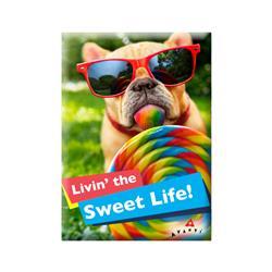 Magnet Avanti Sweet Life