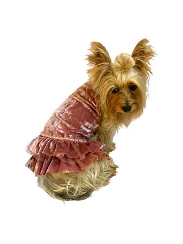 Crushin' on YOU Rosewater Metallic Velvet Dress