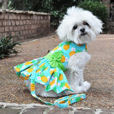 Pineapple Luau Dress w/ Leash & D-Ring