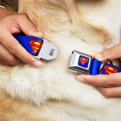 Superman Shield Blue Collars & Leads by Buckle-Down