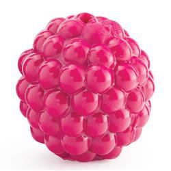 "Planet Dog- Orbee-Tuff Fetch Fresh PRODUCE, 1.75"" Raspberry, Pink"