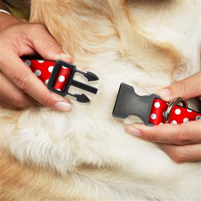 Minnie Mouse Polka Dots Red/White Collars & Leads by Buckle-Down