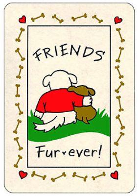 Crunch Card - Friends Fur-ever