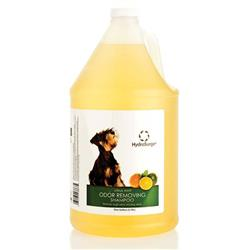 HydroSurge Odor Removing Shampoo - Gallon