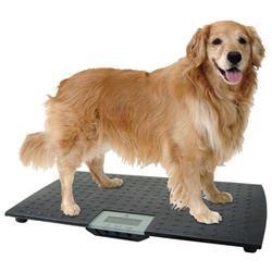 Precision Digital Pet Scale