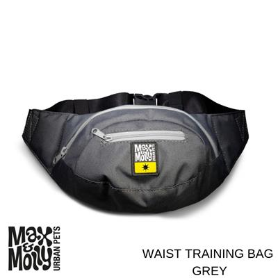 Max & Molly Waist Journey Bags