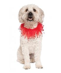 Red Fancy Collar