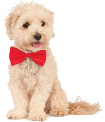 Pet Red Bowtie