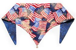 Stars and Stripes ArfScarf