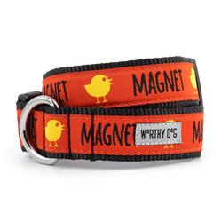 Chick Magnet Collar & Lead Collection