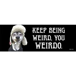 Keep Being Weird, You Weirdo Bumper Magnets
