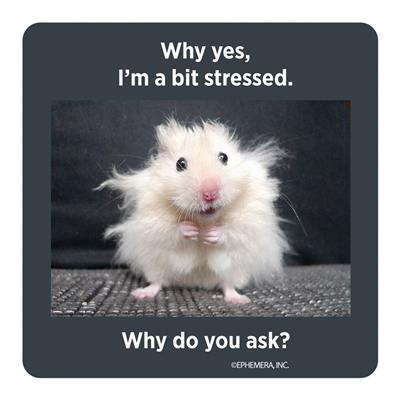 Why yes, I'm a bit stressed. Why do you ask? - Coaster