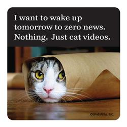 I want to wake up tomorrow to zero news. Nothing. Just cat videos. - Coaster
