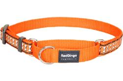 Orange Reflective Bones - Martingale Collar