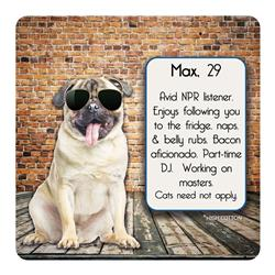 Max, 29 - Dog Dating Coaster
