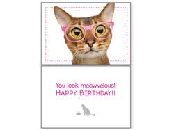 Cat Birthday - Meowvelous (6 pack)