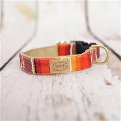 "1"" Orange Serape Stripe Collars and Leads"