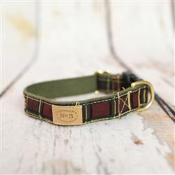 """1"""" Conductor Plaid Collars and Leads"""