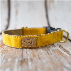 Yellow Waxed Cotton Collars, Leads, and Harnesses