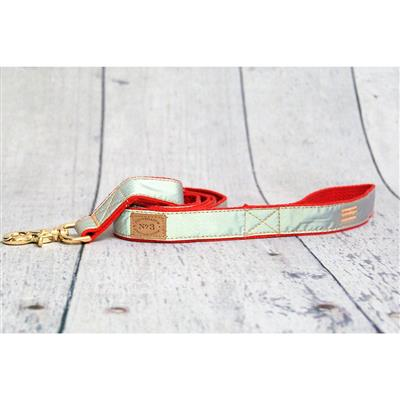 """1"""" Red Reflective Collars and Leads"""
