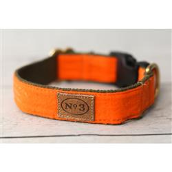 "1"" Pointer Orange Collars and Leads"