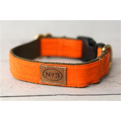 """1"""" Pointer Orange Collars and Leads"""
