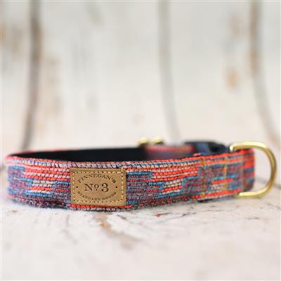 """1"""" Neon Tribal Collars and Leads"""