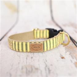 """1"""" Sunshine Stripes Collars and Leads"""