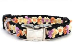 Coco Maize Dog Collar - Gold Metal Buckles