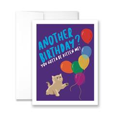 Another Birthday? You Gotta Be Kitten Me! - Pack of 6 cards