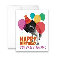 Happy Birthday You Party Animal - Pack of 6 cards
