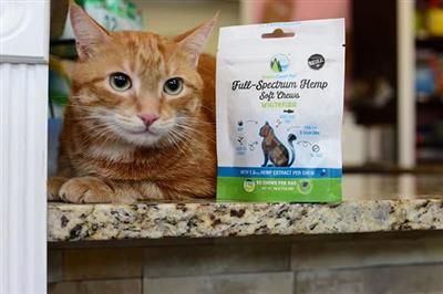 Broad Spectrum Soft Chews for Cats - Whitefish Flavor (30 Chews)