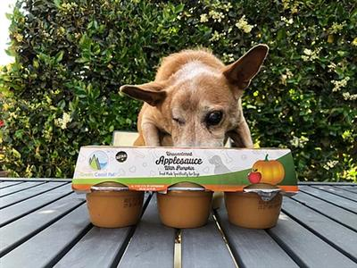 Unsweetened Applesauce with Pumpkin for Dogs (6 Pack)