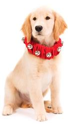 Red Jingle Bell Collar