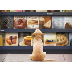 Just Browsing - 1000 Piece Puzzle