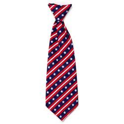 Stars and Stripes Neck Tie