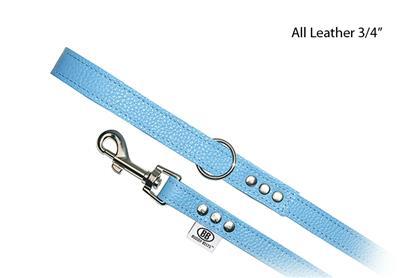 BB  Leash ~ BB Blue