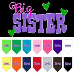 Big Sister Screen Print Pet Bandana