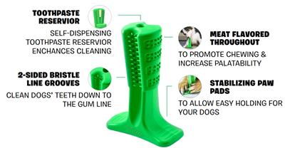 "BRISTLY ""DIY"" toothbrush for dogs (Brushing Stick) * VERSION 2"