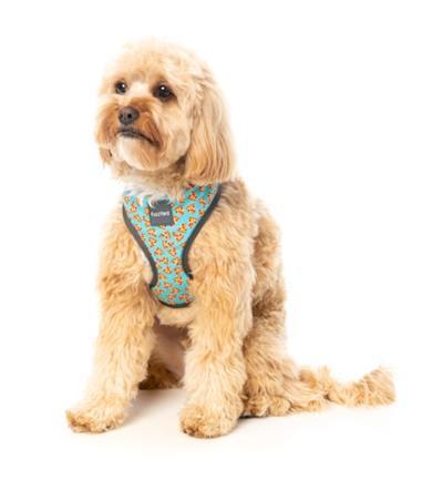 Pizza Lyf - Dog Harness