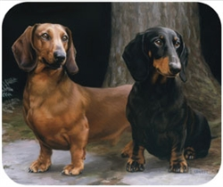 Dachshunds on Path Mouse Pad