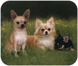 Chihuahuas on Path Mouse Pad