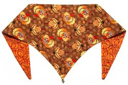 Turkey Time Thanksgiving ArfScarf