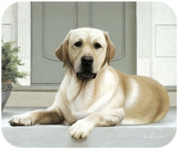 Yellow Lab on Porch Mouse Pad