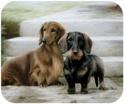 Dachshunds on Porch Mouse Pad