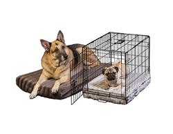 DuraCloud Orthopedic Pet Beds