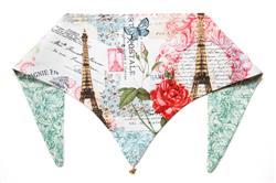 Paws Around Paris ArfScarf