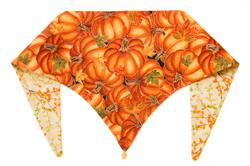 Harvest Happiness Fall ArfScarf